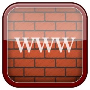 clicks and bricks, webwinkel